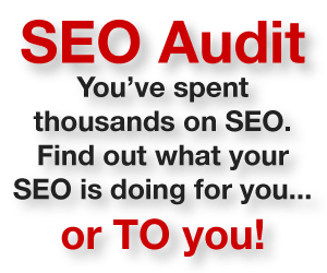 SEO Audit - find out what your SEO is up to