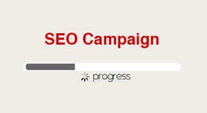 seo progress