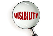 Search Engine Visibility Packages