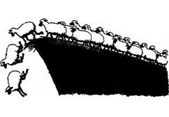 SEO herd menatlity