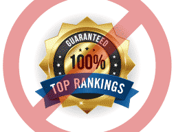 No top SEO rankings guaranteed