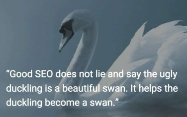 SEO helps ugly ducklings become beautiful swans.
